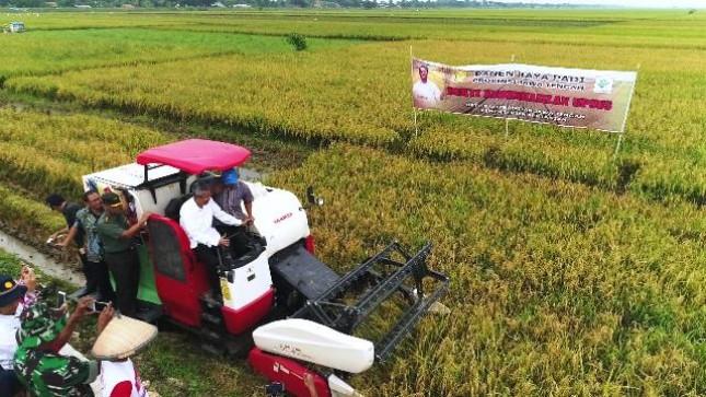 DPD Ragukan Urgensi Pemerintah Impor 500.000 Ton Beras